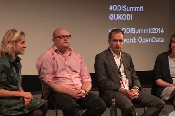 Steve at ODI summit
